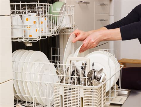 how to keep your dishwasher running great plumbing
