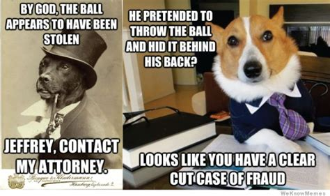 Dog Lawyer Meme - old money dog calls his lawyer weknowmemes