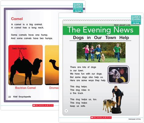 sle of news report book reports for sale custom essays writing service