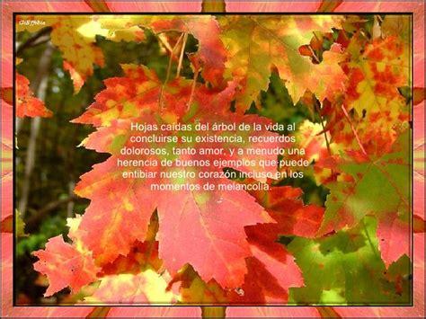 imagenes de octubre el mes mas hermoso feliz mes de noviembre