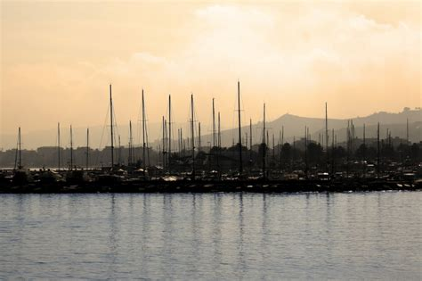 di commercio san benedetto tronto una citt 224 d amare lory pesca commercio prodotti ittici