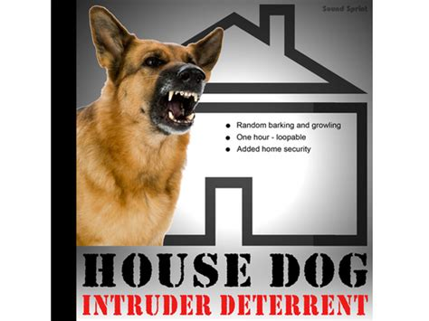 big barking sounds guard barking and growling sounds for added home security r