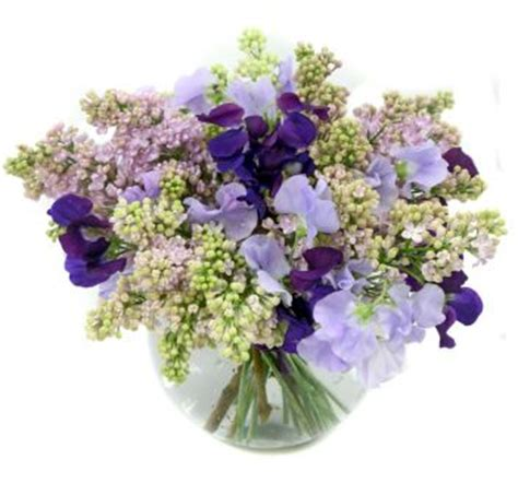 Pea Delivery Lagune Chanson D Amour And Sweet Memories Floral