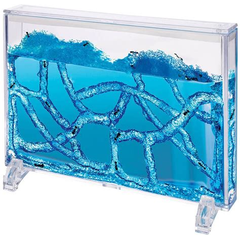 best ant farm the best ant farms of 2017 top ten reviews