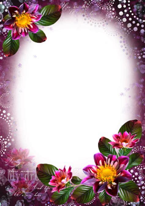 marcos de fotos flores de colores