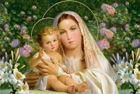 forgiving a marian novena of healing and peace books 54 day rosary novena day 2554 day rosary novena day 25