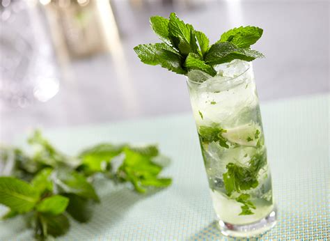 mojito cocktail vodka mojito with vodka recipe vodka drinks ketel one vodka