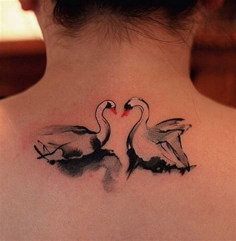 swan tattoos swan tattoos designs ideas and meaning tattoos for you