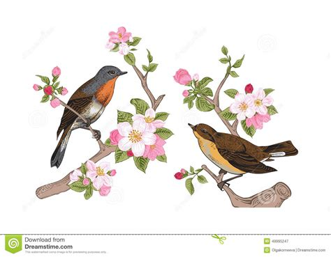 Tree Branch Wall Sticker birds on a branch of apple stock vector image 49995247