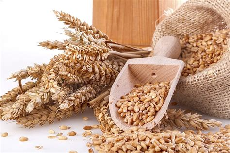 whole grains joint 11 foods that supercharge your brain to boost memory