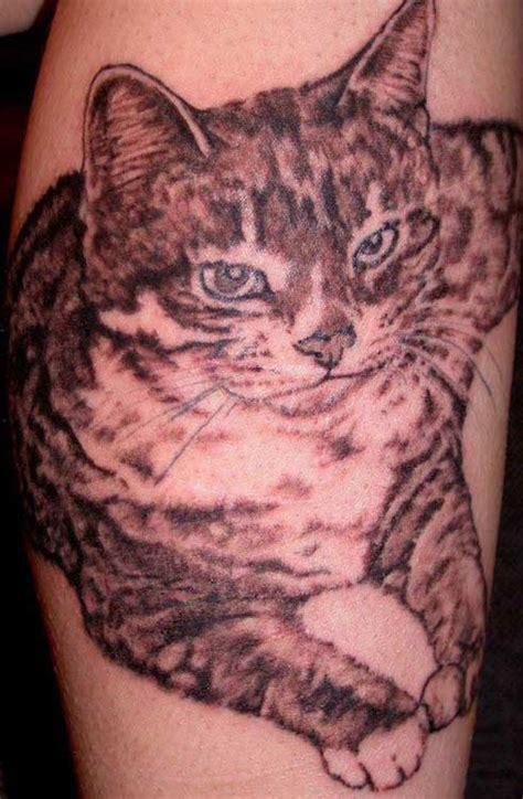 animal tattoo cat realistic cat tattoo by thea duskin tattoos