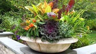 flowers for planters coolest flower planters ideas