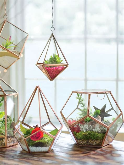 kitchen window terrarium 17 best ideas about hanging terrarium on pinterest diy