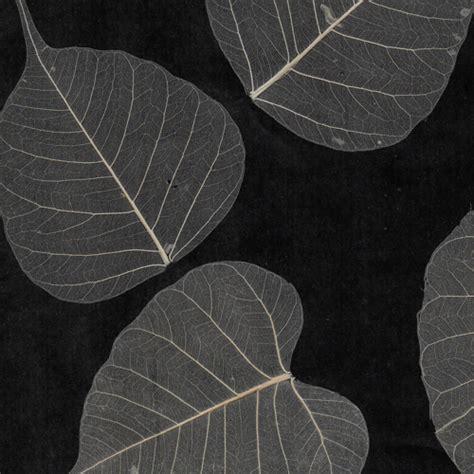 wallpaper black leaf download black and white leaf wallpaper gallery