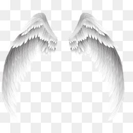 imagenes de uñas trackid sp 006 angel wings png free download