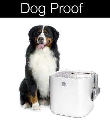 proof litter box best proof cat litter box for those with cats and dogs