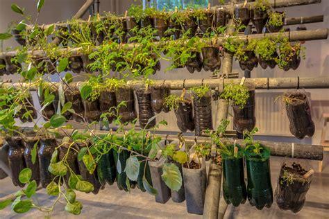 urban gardening  beginners physio logic nyc