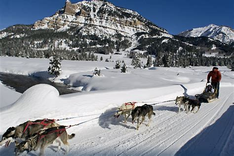 things to do in jackson hole, wyoming: winter edition