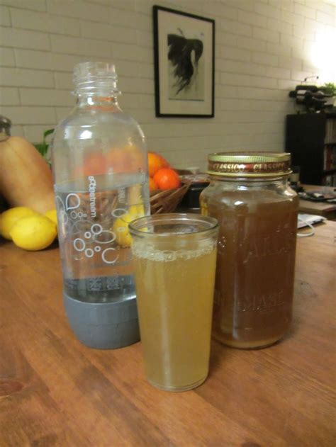 Handmade Soda - 17 best images about sodastream syrup recipes on