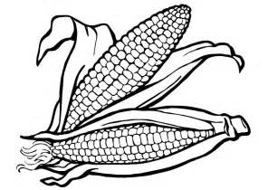 corn coloring pages corn cob coloring page coloring home
