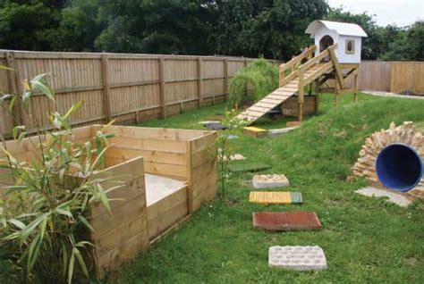 Garden Ideas For Dogs Your Can I Create A Sensory Garden For My Health And Care Care And Advice