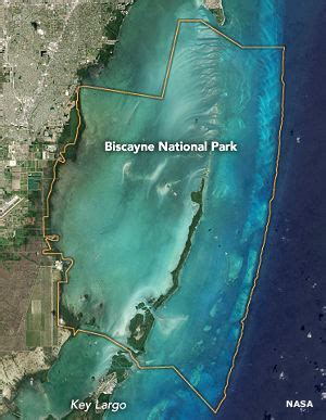 glass bottom boat biscayne national park biscayne national park florida national park service sites