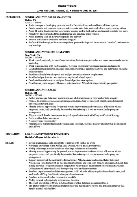sle resume summary for business analyst data analyst resume blaster resume summary best resume