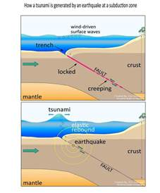 Outline The Causes Of Earthquakes Scheme by 4 Major Reasons For Formation Of Tsunami Explained