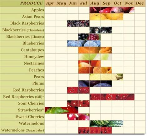 fruit seasons local foods