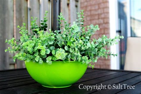 Patio Table Flower Planters by The World S Catalog Of Ideas