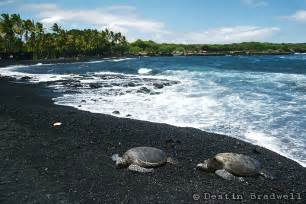 black sand beach big island punaluu black sand beach