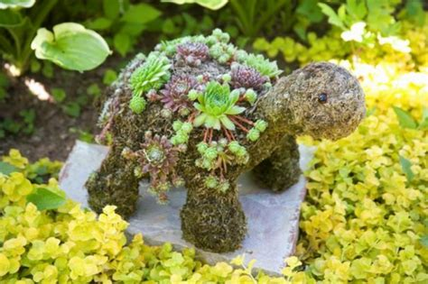 turtle succulent planter succulent turtle planter topiary will look cute in your garden
