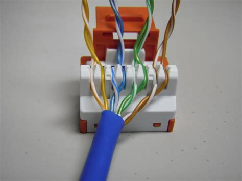 home cat  wire diagram outlet ethernet printable diagram