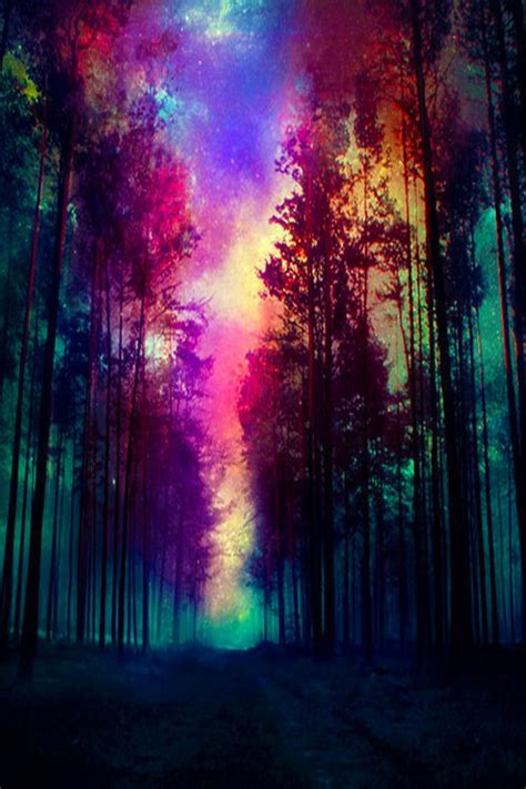 wallpaper for iphone 5 zedge download magic nordic forest wallpapers to your cell phone