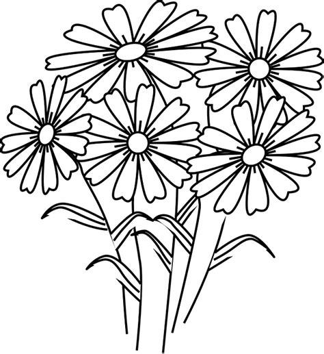 gambar vektor gratis bunga aster ikat musim semi