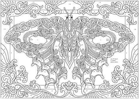 butterfly beauty color  number  adult coloring