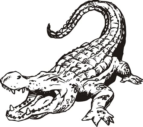 alligator clip art free clipart best clipart best