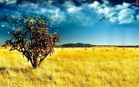 wallpaper keren  desktop pc  wallpaper gallery
