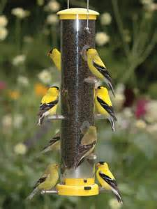 wbu medium quick clean finch feeder yellow