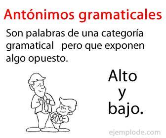 significado de antonimos y ejemplos de antonimos postea mejor ejemplo de ant 243 nimos gramaticales
