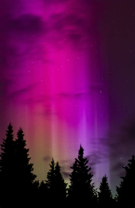 lunacy alaska northern lights 1000 images about watercolor art and art inspiration on