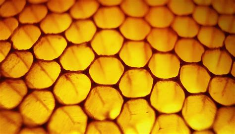 Honey Comb Honeycomb beehive analogy in missions