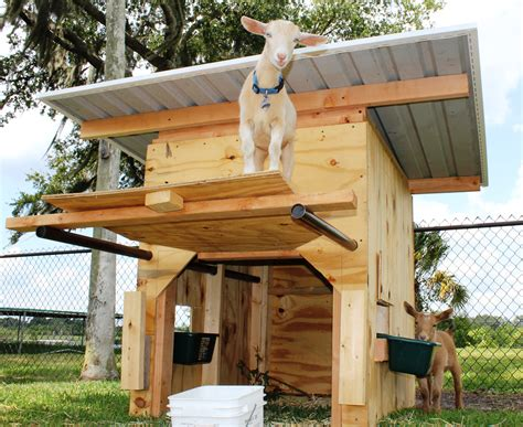 the goat house pics for gt goat house plans design