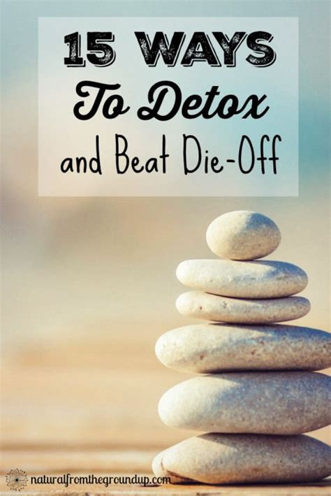 Candida Detox Withdrawal by 1000 Ideas About Detox Symptoms On Obesity