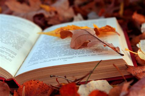 libro autumn seasons book on autumn leaves wallpapers and images wallpapers