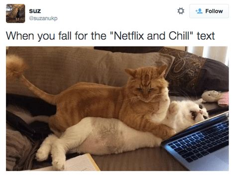 define web celebrity 15 exles of what it means to netflix and chill pop