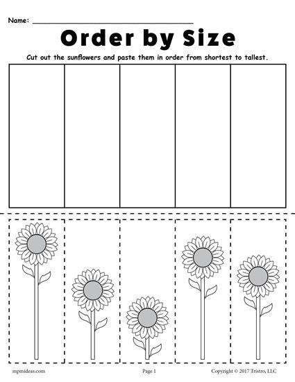 free printable sunflower ordering worksheets shortest to