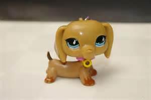 Littlest pet shop dachshund related keywords amp suggestions littlest