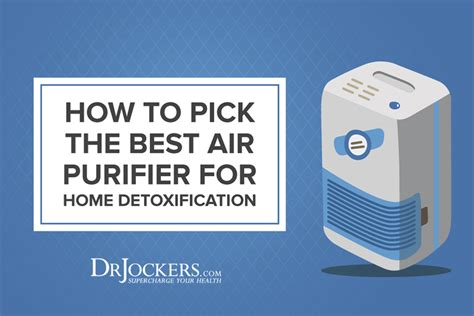 How To Detox From Plouted Air by How To The Best Air Purifier For Home Detoxification