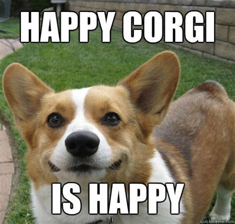 Corgi Puppy Meme - pin by shannon smaglick on misc cute corgis pinterest